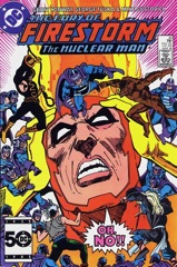 The Fury of Firestorm, The Nuclear Man #45