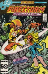 The Fury of Firestorm, The Nuclear Man #41