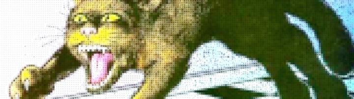 garf_mosaic